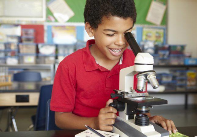 Primary science homeschooling
