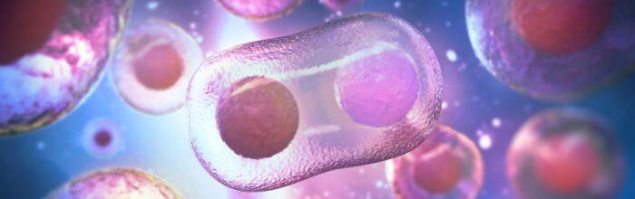 igcse biology course